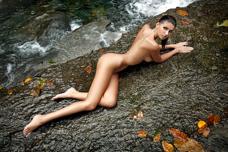 lisa turtle nude free pics